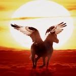 【第7チャクラの力と発声法】大開運のための宿命、運命、天命について。
