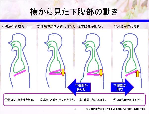 発声法】声を出した途端に腹式呼吸の下腹部を忘れてしまう人は…。解決 ...
