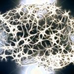 【声を出す重要性】一流アスリートはここぞという時に「脳のリミッターを外す」為に声を使う!
