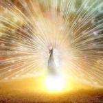 ◆【潜在意識、脳科学と願望実現③】夢が現実に変わるとき一体何が起こっているのか?